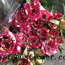 black roses for sale hot selling black roses sale high quality fresh cut flower spray