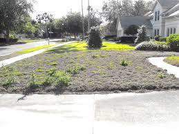 Grassless Backyard Ideas Grassless Yard In Tampa Fl Florida Grassless Yards