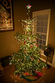 tannenbaum customer comments and photos