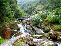 Rock Garden Darjeeling by Darjeeling Well U2026 Its My Blog U2026