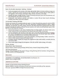 C Level Executive Resume Samples by Strategic Marketing Executive Resume Example