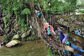 the living root bridges of cherrapunji india strange places 02