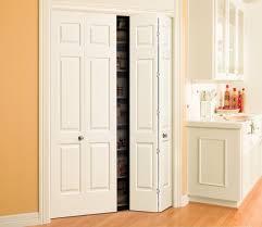 Six Panel Closet Doors Home Decor Interesting Pantry Doors Glamorous