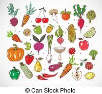 vectors of sketches of isolated farm vegetables carrot and