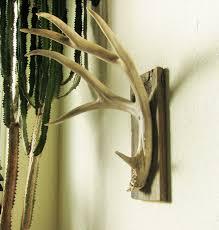 Outdoorsman Home Decor Natural Five Point Mule Deer Antler Shed Wall Hook On Barnwood For