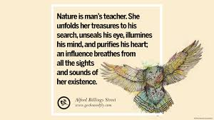 quotes about heart strength 32 beautiful quotes about saving mother nature and earth