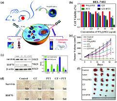 two dimensional transition metal dichalcogenide nanomaterials for