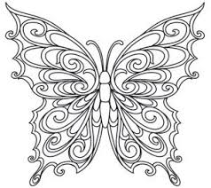 butterfly coloring pages 90 best butterflies and dragonflies images on pinterest drawings