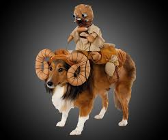 star wars dog halloween costumes 22 star wars dog costumes that you need rn