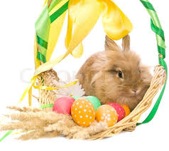 rabbit easter basket festive easter bunny is sitting in a basket with colored eggs