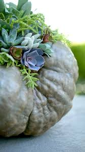 53 best fall decor ideas images on pinterest fall gardening and