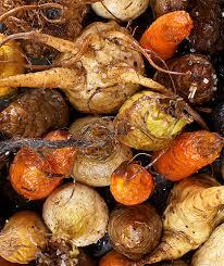 cuisiner les l馮umes anciens les légumes racines pois féculents anciens dans les recettes de