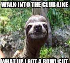 Sloth Meme Images - the best sloth memes