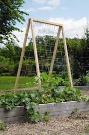 twine vegetable garden trellis