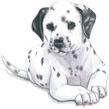 dalmatian puppy steelpaws deviantart