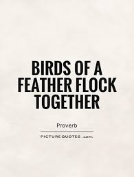 birds of a feather flock together picture quotes