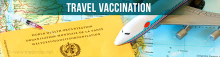 Georgia travel vaccines images Travel vaccination calculator jpg