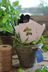 Herb Garden Gift Ideas Pin By Nancy S On Herbs Pinterest Seed Packets Herbs And Gift