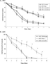 overexpression of platelet type 12 lipoxygenase promotes tumor