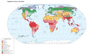 Blank World Map With Equator And Tropics by Tabbara Grade 6 Geography Resources