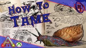 ark survival evolved