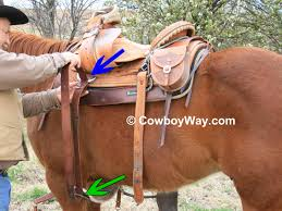 horse saddle how to saddle a horse page 2
