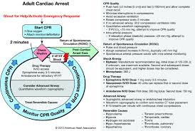 part 8 advanced cardiovascular life support circulation
