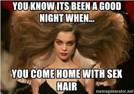 Crazy Sex Memes - you know its been a good night when you come home with sex hair