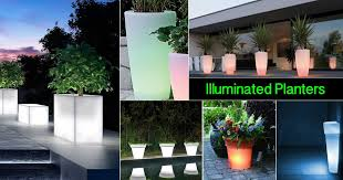 Glow In The Dark Planters by 17 Illuminated Planters How To Make A Glowing Romantic Backyard
