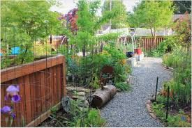 microclover backyard landscaping google search deco concepts