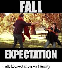 Fall Memes - 25 best memes about vs reality vs reality memes