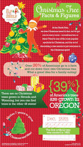 10 best tree facts images on pinterest random facts crazy facts