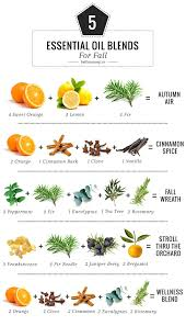 essential oils for fragrance ls 42 best scents images on pinterest soaps households and essential
