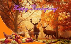 100 imagenes happy thanksgiving day happy