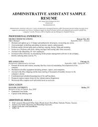 Resume Summary Statement Examples Administrative Assistant Simple Summary Statements Resume Template Example For