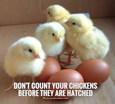 Don Count The Chicken Before They Hatch Don T Count Your Chickens Before They Are Hatched Picture Quotes
