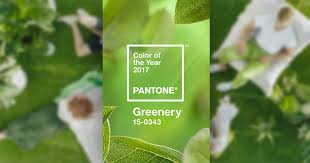 2017 Color Of The Year Pantone Pantone Color Of The Year 2017 U2013 Greenery Web Creator Box