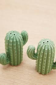 cactus salt and pepper shakers urban outfitters