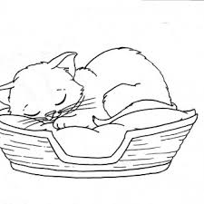 kitten coloring pages printable free colour paint