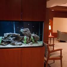 Aquascapes Of Ct Elite Aquaria 10 Photos Aquarium Services Bridgeport Ct