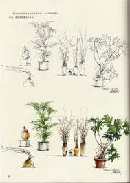 fia hand drawn trees non photoreal visualizations pinterest