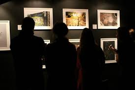 san francisco photographers experience san francisco bay area photography galleries axs