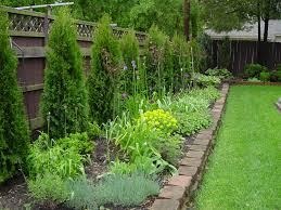 knockout roses and hostas planted along fence low maintenance
