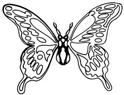 butterfly drawing template butterfly drawing template clipart free