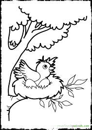 tweety bird coloring pages printable coloring pages