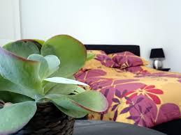 chambre d h e montpellier le clos chez michel chambres d hôtes bed breakfast