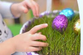 easter basket grass grow your own easter grass growing a jeweled