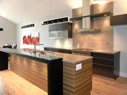 style de cuisine image pour cuisine moderne agrandir une cuisine de chef racsolument