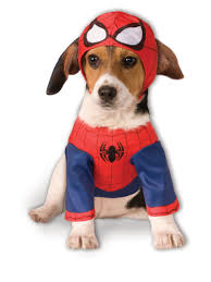 foot clan halloween costume halloween costumes for dogs buycostumes com