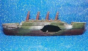axolotl tank ideas collection on ebay